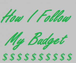 How I Follow My Budget