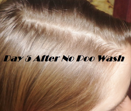 A Year Without Shampoo What You Should Know Before You