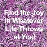 Find the Joy In Life